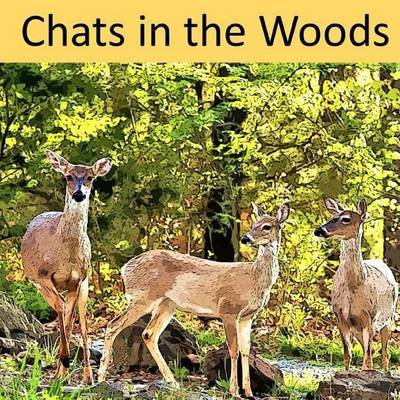 Chats in the Woods (Paperback): Angie Owens Bennett