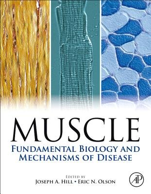 Muscle 2-Volume Set - Fundamental Biology and Mechanisms of Disease (Hardcover, New): Joseph Hill, Eric Olson