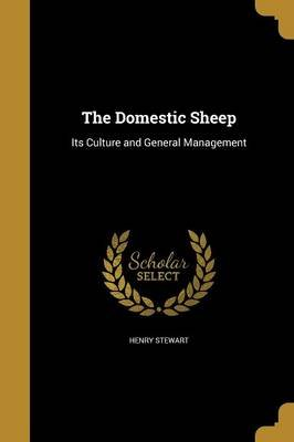 The Domestic Sheep (Paperback): Henry Stewart