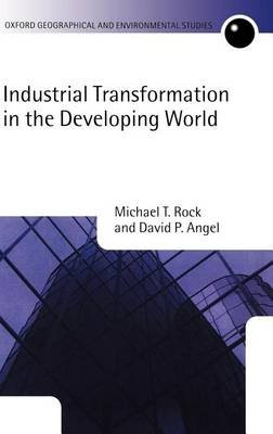 Industrial Transformation in the Developing World (Electronic book text): Michael T. Rock, David P. Angel