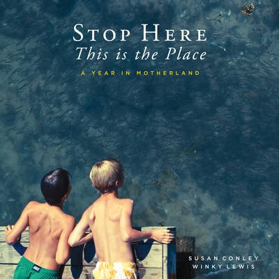 Stop Here, This is the Place (Hardcover): Susan Conley