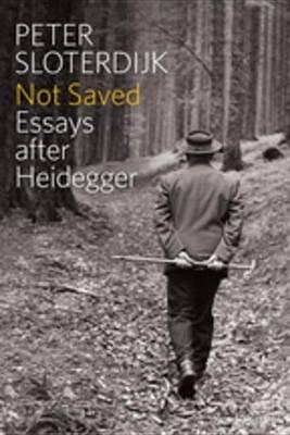 Not Saved - Essays After Heidegger (Electronic book text, 1st edition): Peter Sloterdijk