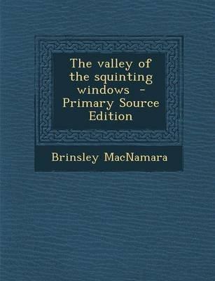 The Valley of the Squinting Windows (Paperback): Brinsley MacNamara