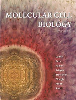 Molecular Cell Biology (Hardcover, 7th): Harvey Lodish