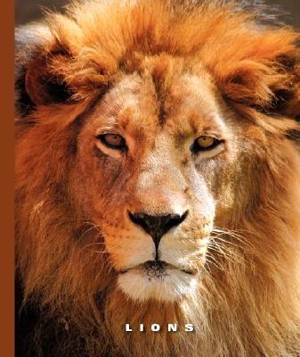 Lions (Hardcover): Sophie Lockwood