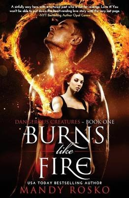 Burns Like Fire (Paperback): Mandy Rosko