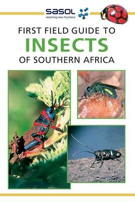 Sasol First Field Guide to Insects of Southern Africa (Paperback): Alan Weaving