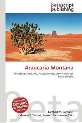 Araucaria Montana (Paperback): Lambert M. Surhone, Mariam T. Tennoe, Susan F. Henssonow