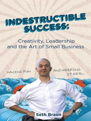 Indestructible Success - Creativity, Leadership and the Art of Small Business (Electronic book text): Seth Braun
