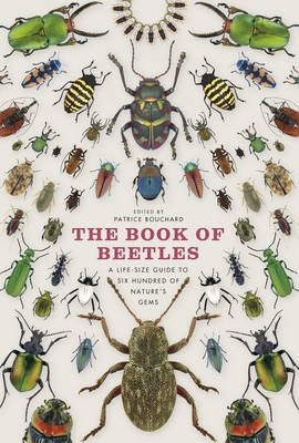 The Book of Beetles - A Life-Size Guide to Six Hundred of Nature's Gems (Hardcover): Patrice Bouchard