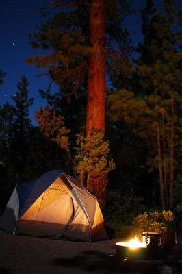 The Let's Go Camping Journal - 150 Page Lined Notebook/Diary (Paperback): Cool Image