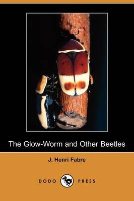 The Glow-Worm and Other Beetles (Dodo Press) (Paperback): Jean-Henri Fabre