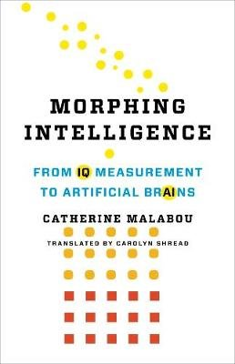 Morphing Intelligence - From IQ Measurement to Artificial Brains (Hardcover): Catherine Malabou
