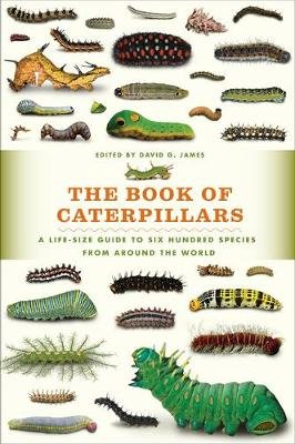 The Book of Caterpillars - A Life-Size Guide to Six Hundred Species from Around the World (Hardcover): David G James