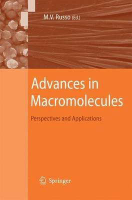 Advances in Macromolecules - Perspectives and Applications (Paperback, 2010 ed.): Maria Vittoria Russo