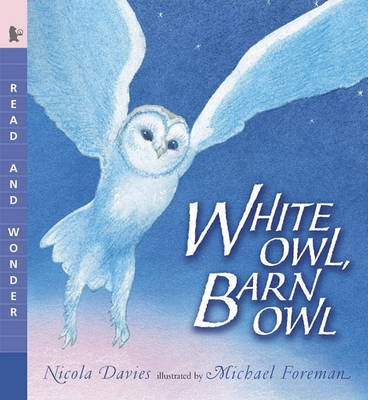 White Owl, Barn Owl (Hardcover, Bound for Schools & Libraries ed.): Nicola Davies