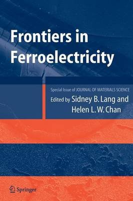 Frontiers of Ferroelectricity - A Special Issue of the Journal of Materials Science (Hardcover): Sidney B. Lang, Helen L.W. Chan