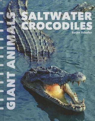 Saltwater Crocodiles (Hardcover): Susan Schafer