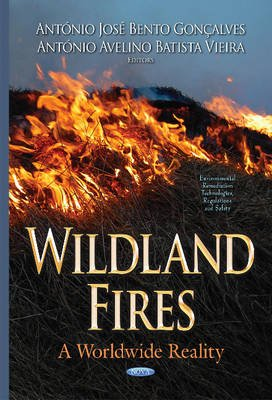 Wildland Fires - A Worldwide Reality (Hardcover): Antonio Jose Bento Goncalves, Antonio Avelino Bat