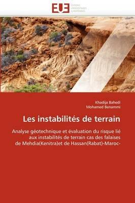 Les Instabilites de Terrain (French, Paperback): Collectif