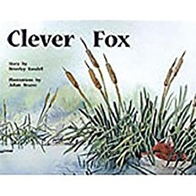 Rigby PM Plus - Leveled Reader Bookroom Package Yellow (Levels 6-8) Clever Fox (Paperback): Rigby