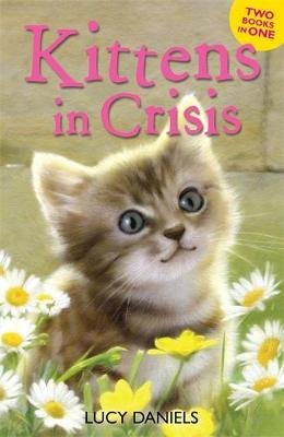 Animal Ark: Kittens in Crisis - Tabby in the Tub & Cats in the Caravan (Paperback): Lucy Daniels