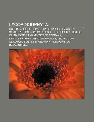 Lycopodiophyta - Huperzia, Isoetes, Lycophyte Species, Lycophyte Stubs, Lycopodiopsida, Selaginella, Isoetes (Paperback):...