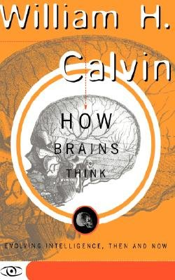How Brains Think - Evolving Intelligence, Then And Now (Paperback): William H. Calvin