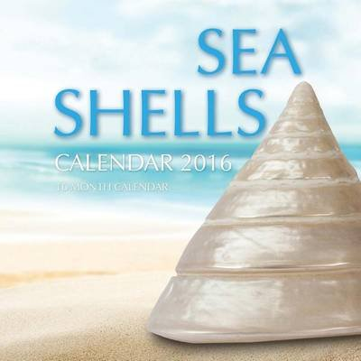 Sea Shells Calendar 2016 - 16 Month Calendar (Paperback): Jack Smith