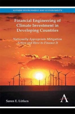 Financial Engineering of Climate Investment in Developing Countries - Nationally Appropriate Mitigation Action and How to...