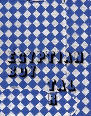 Tal R: Egyptian Boy (Paperback):