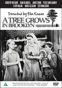 A   Tree Grows in Brooklyn (DVD): Dorothy McGuire, Joan Blondell, James Dunn, Lloyd Nolan, James Gleason, Peggy Ann Garner,...