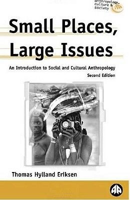 Small Places, Large Issues - An Introduction to Social and Cultural Anthropology (Hardcover, 2nd Revised edition): Thomas...