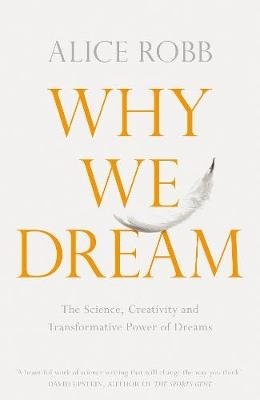Why We Dream - The Science, Creativity and Transformative Power of Dreams (Hardcover): Alice Robb