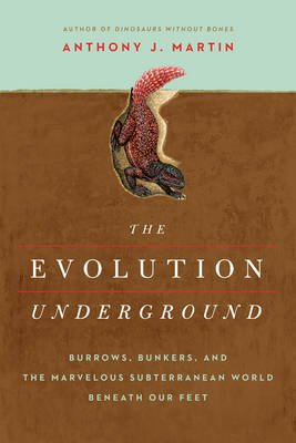 The Evolution Underground - Burrows, Bunkers, and the Marvelous Subterranean World Beneath our Feet (Hardcover): Anthony J....