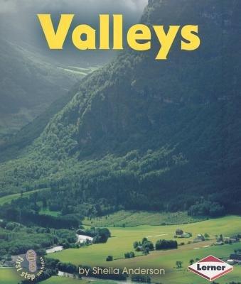 Valleys (Paperback): Sheila Anderson