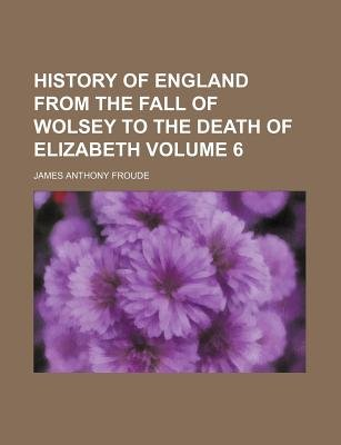 History of England from the Fall of Wolsey to the Death of Elizabeth Volume 6 (Paperback): James Anthony Froude