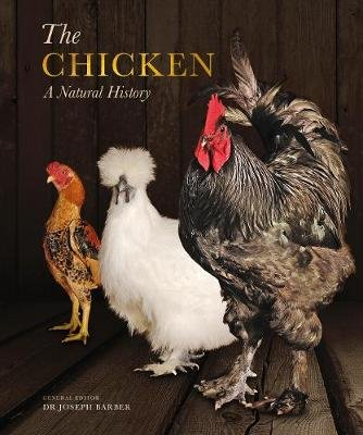 The Chicken - A Natural History (Paperback): Joseph Barber