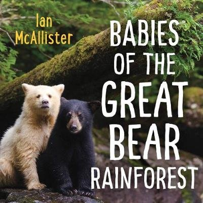 Babies of the Great Bear Rainforest (Board book): Ian McAllister