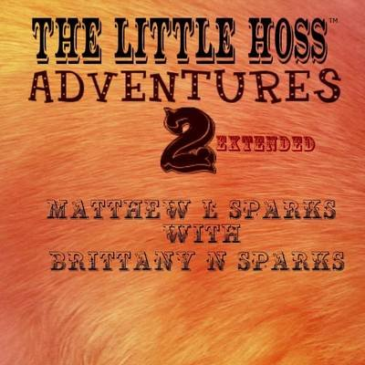 Little Hoss Adventures 2 (Paperback): Matthew Landon Sparks