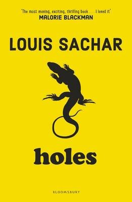 Holes Book Epub