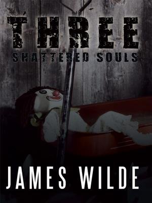 Three Shattered Souls (Electronic book text): James Wilde