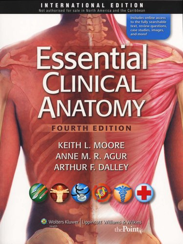 Essential Clinical Anatomy (Paperback, 4th revised international ed ...