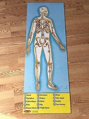 Melissa Amp Doug Human Anatomy Floor Puzzle Double Sided