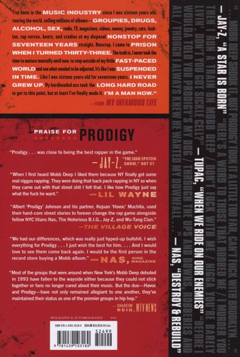 my infamous life the autobiography of mobb deeps prodigy