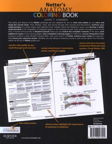 Netter S Anatomy Coloring Book Paperback John T Hansen