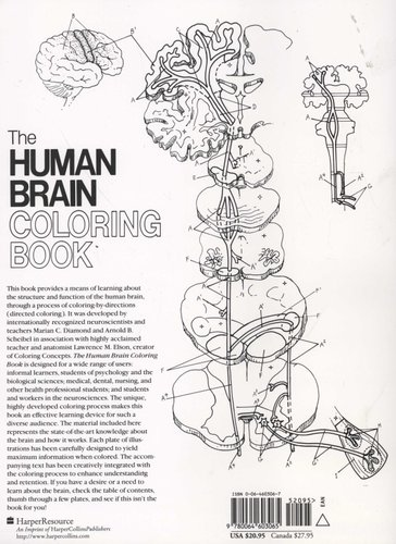The Human Brain Colouring Book (Paperback, 1st ed): Marion C ...