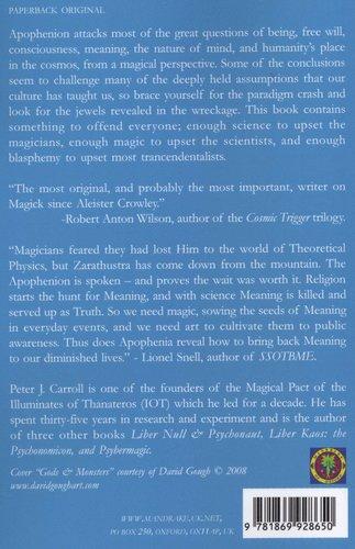The Apophenion - A Chaos Magic Paradigm (Paperback): Peter J