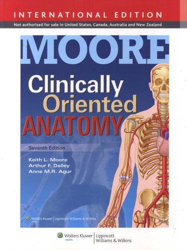 Clinically Oriented Anatomy (Paperback, Seventh, International ...